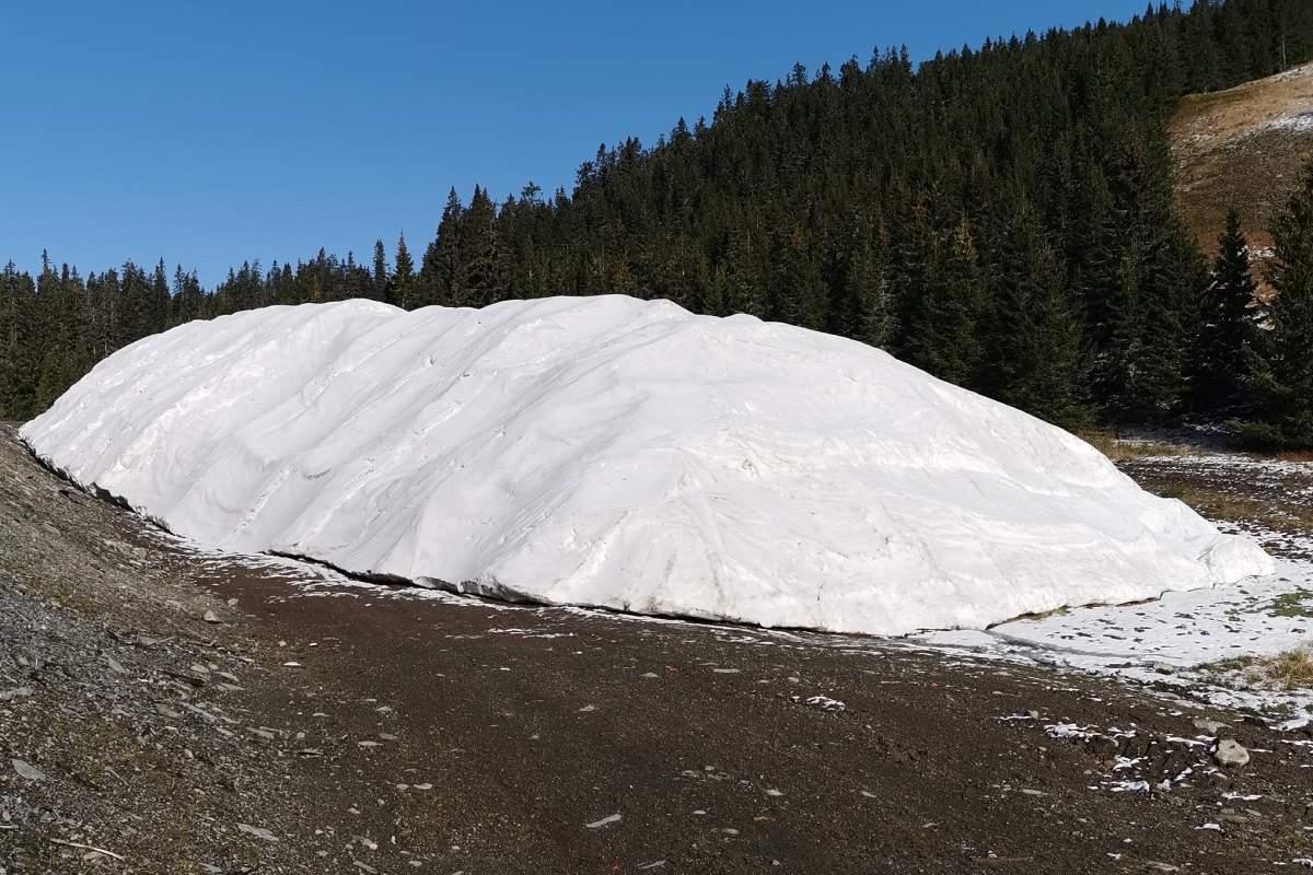 master plan of snow(3)