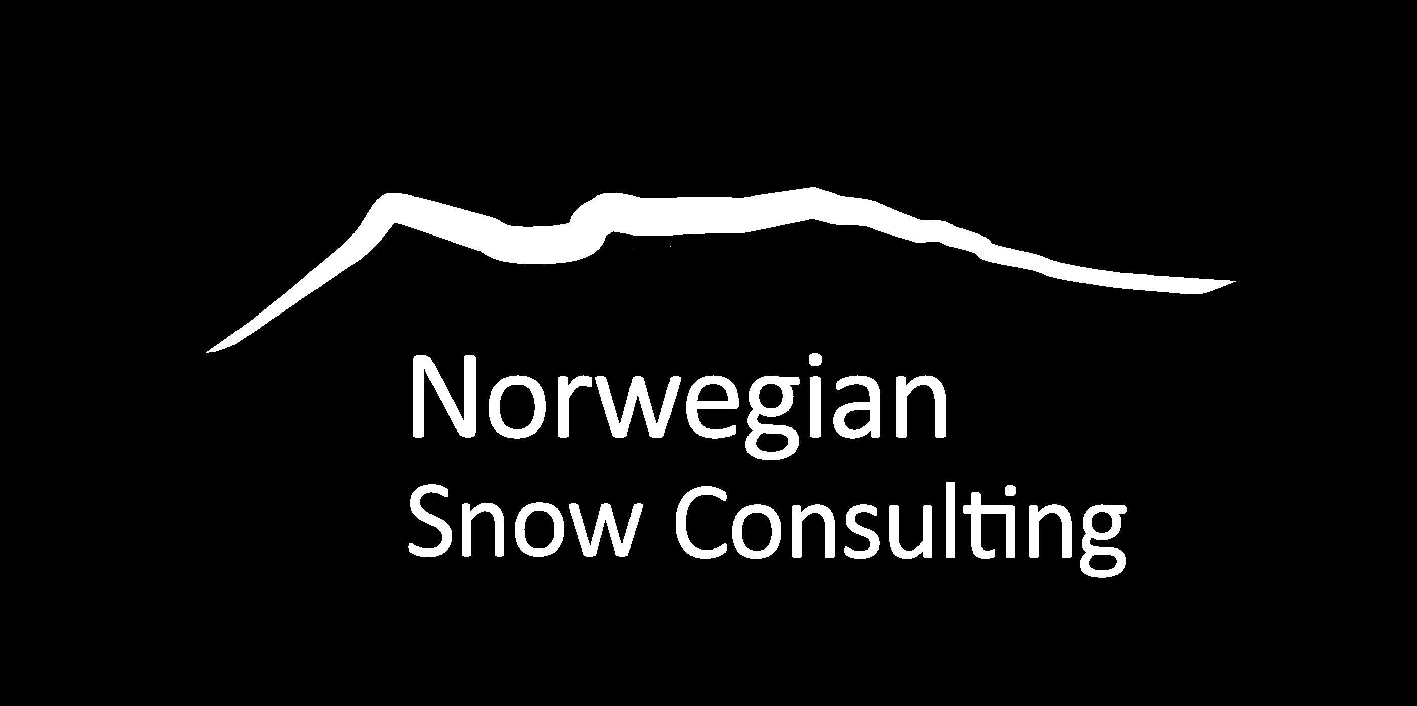 Norwegian Snow Consulting